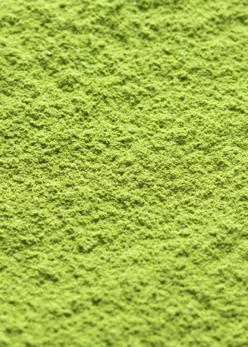 Organic Matcha 100 Single Serving Sticks